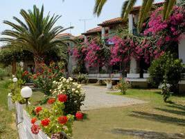 Paradise Hotel Zth